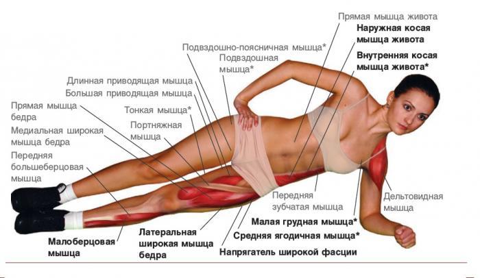 Можно ли выполнять следующие упражнения после МДЭ? Форум о позвоночнике