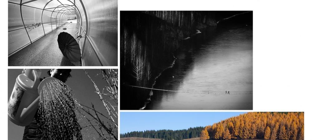 Провинция. Притяжение души, выставка Пермского биеннале фотографии