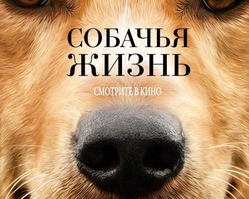 Собачья жизнь, кино.