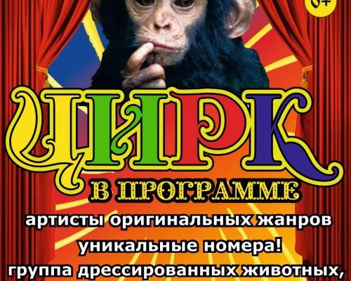 Цирк зверей,шоу